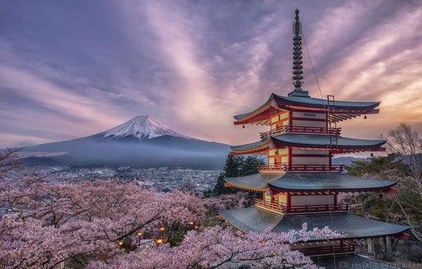 Туры в Японию