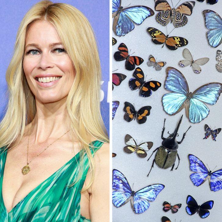 Одна из крупнейших в мире моделей моды, Клаудия Шиффер, была очарована пауками с самого детства
