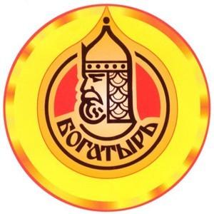 Команда «Богатыри» эмблема